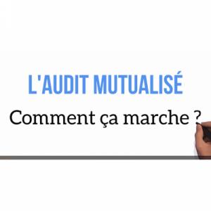 Mutual Audit